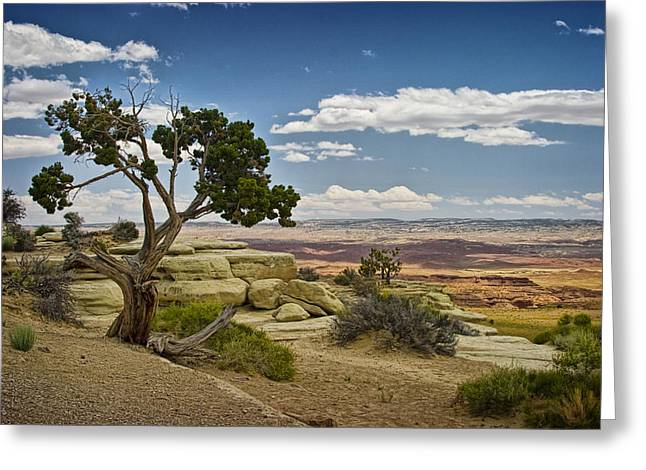 View From A Mesa Greeting Card by Randall Nyhof