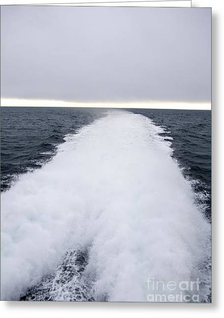 View From Back Of Ferry, Strait Of Juan De Fuca, Washington Greeting Card by Paul Edmondson
