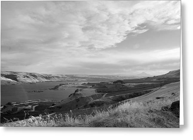 Greeting Card featuring the photograph View From The Hill Columbia River by Kathleen Grace