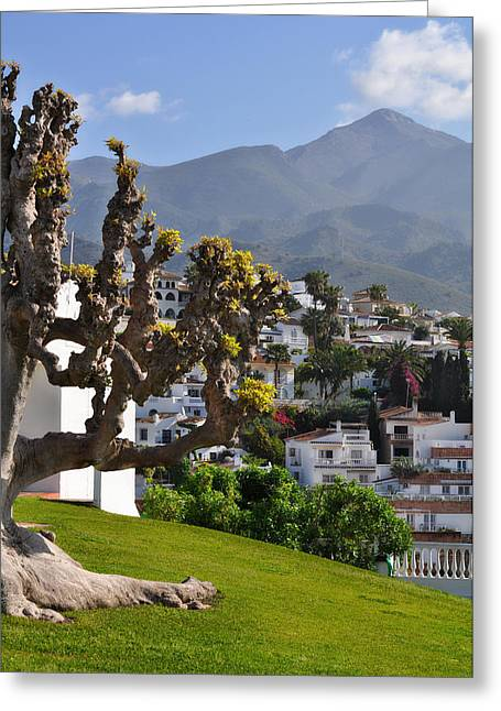 View From The Parador Nerja Greeting Card by Mary Machare