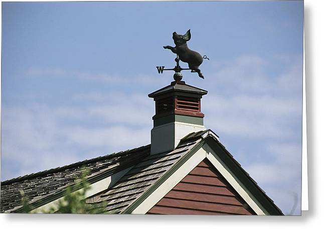 View Of A Flying Pig Weathervane Greeting Card
