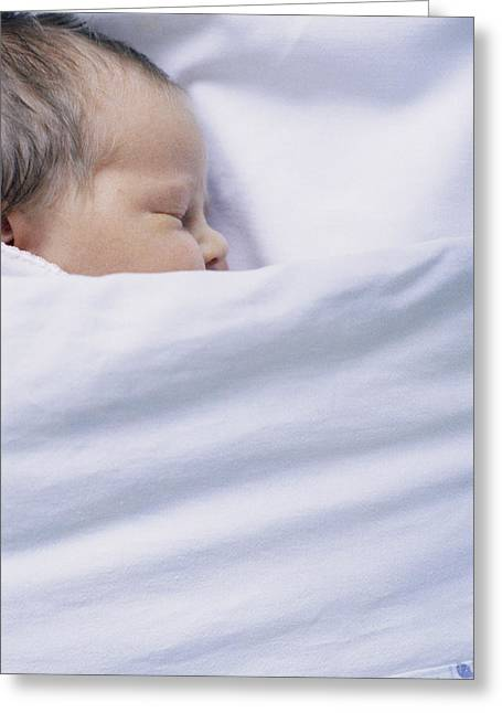 View Of A Premature Baby Asleep In A Cot Greeting Card