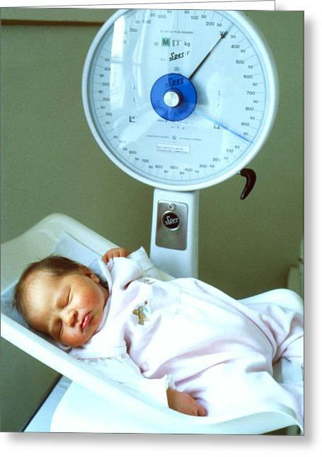 View Of A Premature Baby Being Weighed Greeting Card