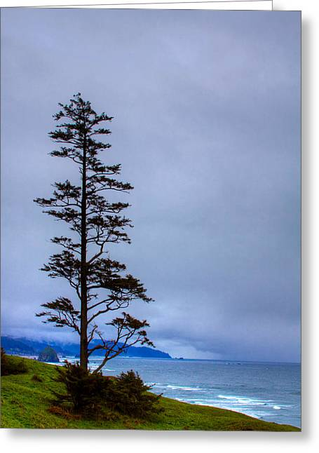 View Of Cannon Beach From Ecola State Park Greeting Card