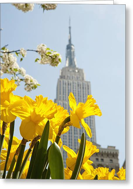 Views Of The Empire State Building And Greeting Card by Axiom Photographic
