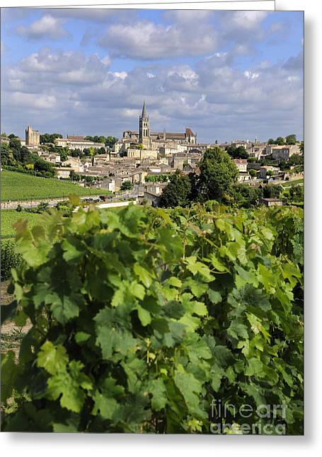 Village And Vineyard Of Saint-emilion. Gironde. France Greeting Card by Bernard Jaubert