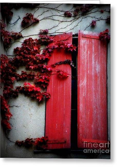 Vines On Red Shutters Greeting Card