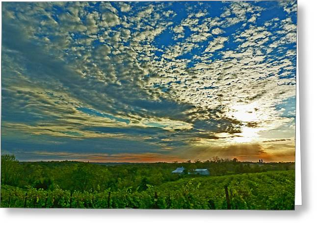 Greeting Card featuring the photograph Vineyard Sunset I by William Fields