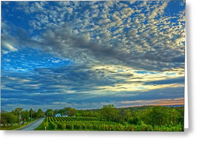 Greeting Card featuring the photograph Vineyard Sunset II by William Fields