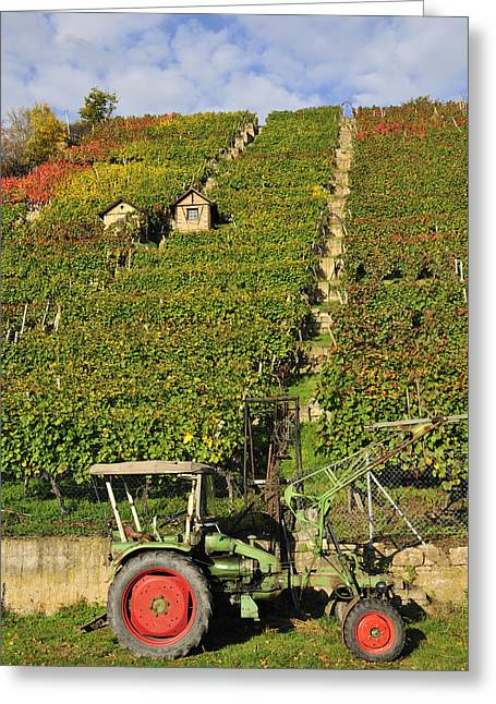 Vineyard With Tractor Greeting Card by Matthias Hauser