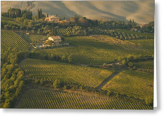 Vineyards Surround Villas Greeting Card