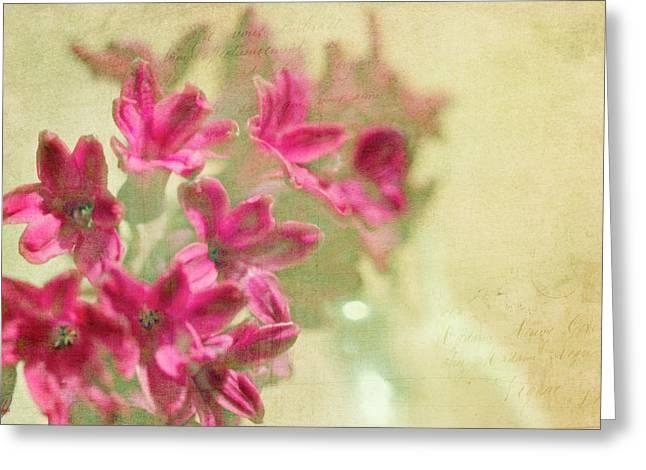 Vintage Hyacinth Greeting Card
