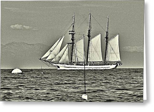Vintage Tall Ship Greeting Card by Lauren Serene