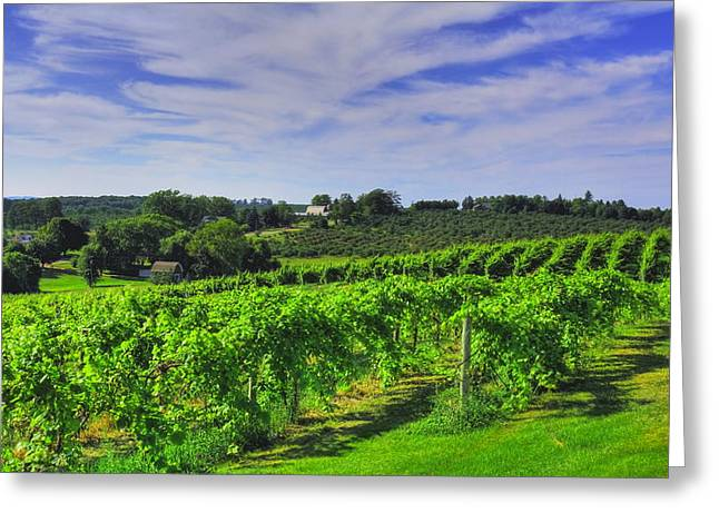 Greeting Card featuring the photograph Vinyard View by Coby Cooper