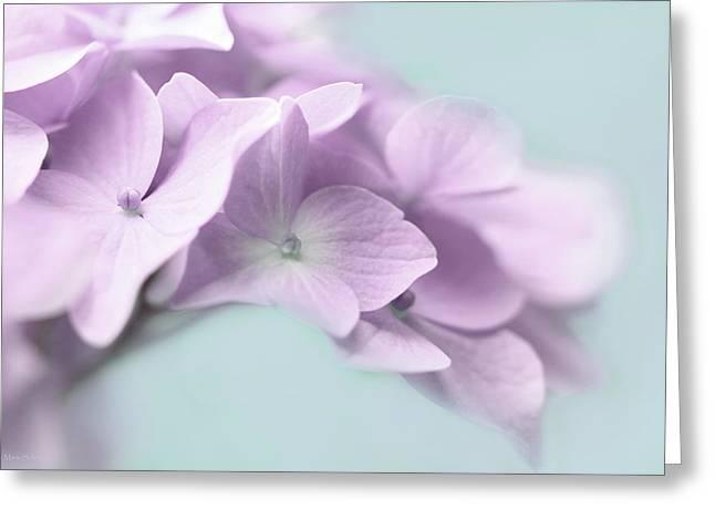 Violet Hydrangea Flower Macro Greeting Card by Jennie Marie Schell