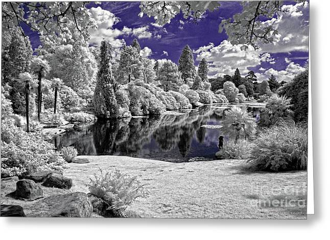 Violet Lake - Infrared Photography Greeting Card by Steven Cragg