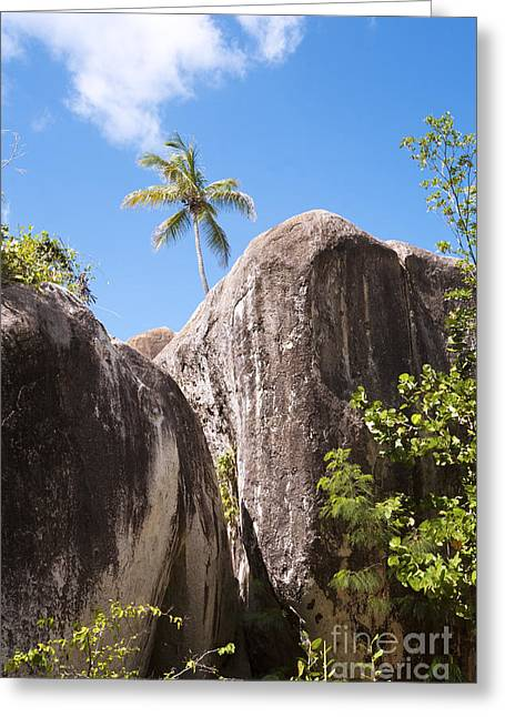 Greeting Card featuring the photograph Virgin Gorda by Leslie Leda