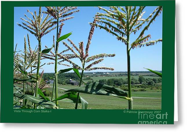 Vista Through Corn Stalks-i Greeting Card by Patricia Overmoyer