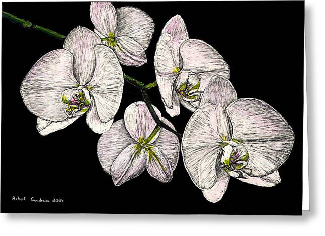 Wade's Orchids Greeting Card by Robert Goudreau
