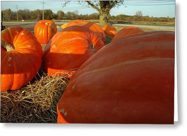 Wagon Ride For Pumpkins Greeting Card