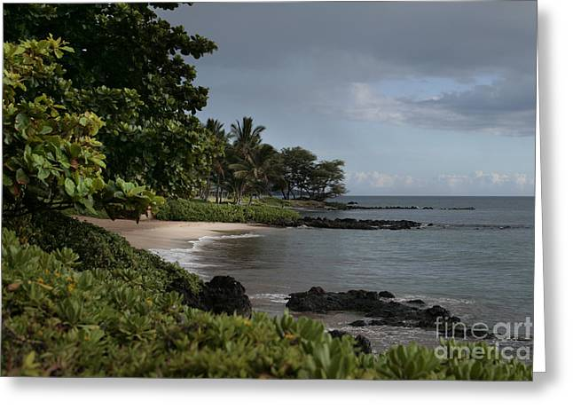 Wailea Polo Beach Maui Hawaii Greeting Card by Sharon Mau