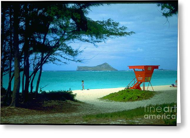 Waimanalo Greeting Card