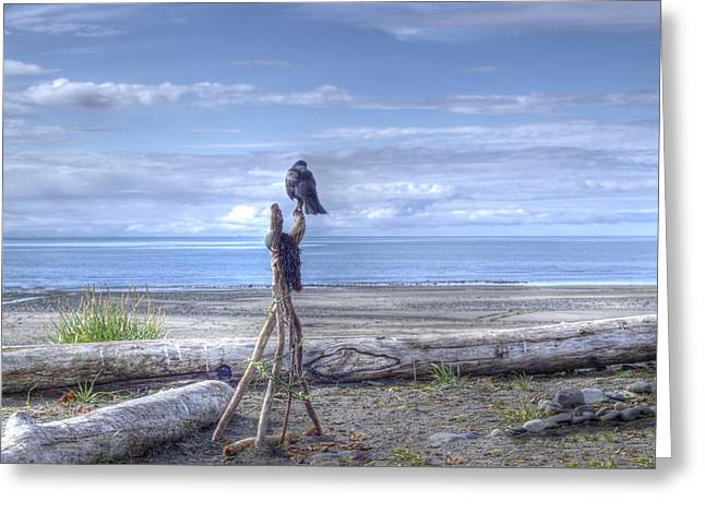 Greeting Card featuring the photograph Waiting And Watching by Michele Cornelius