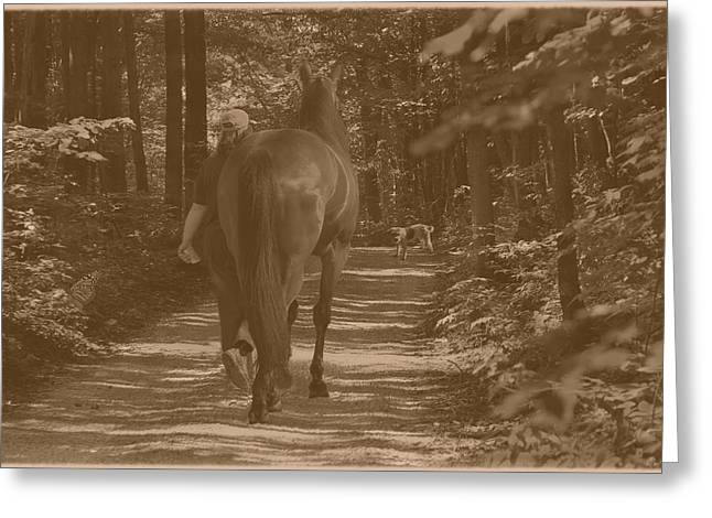 Greeting Card featuring the photograph Walk Down Memory Lane by Davandra Cribbie