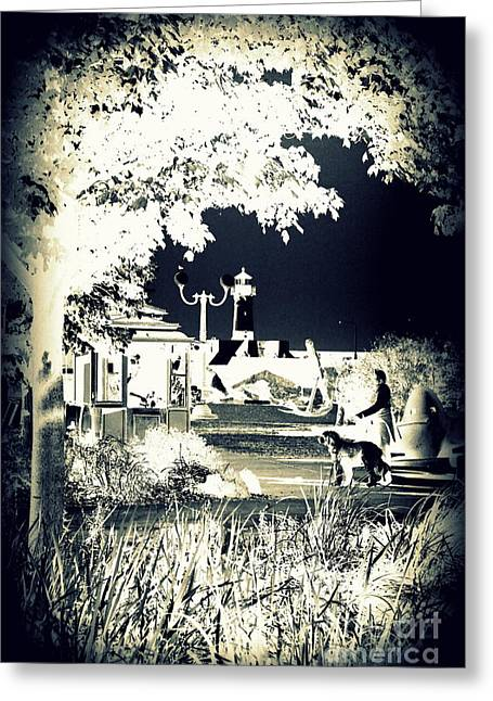 Walk In The Park By The Sea Greeting Card by Alex Blaha