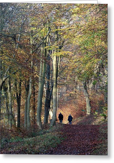 Walk In The Woods Greeting Card by Nicola Butt