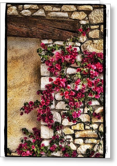 Wall Beauty Greeting Card by Mauro Celotti