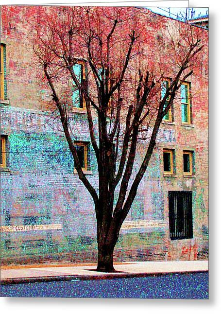 Greeting Card featuring the photograph Wall Wth Secrets by Lizi Beard-Ward