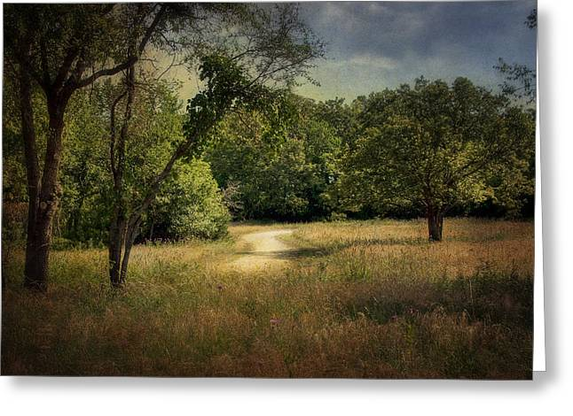 Wandering Path I Greeting Card by Tamyra Ayles