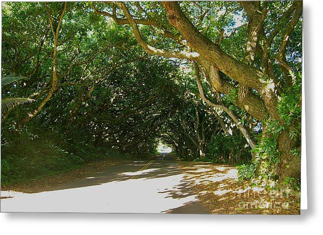 Wandering Road Greeting Card by Silvie Kendall