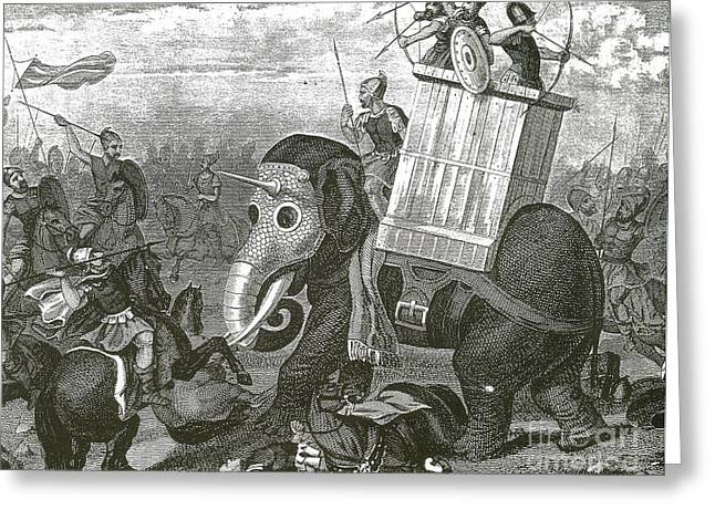 War Elephant Greeting Card by Photo Researchers