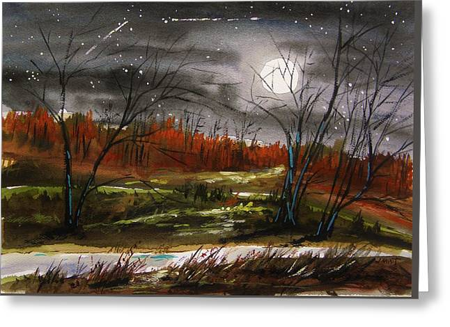 Warm Night And Meteor Shower Greeting Card by John Williams