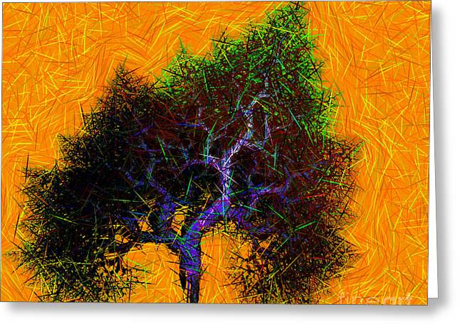 Was A Crooked Tree  Grunge Art Greeting Card