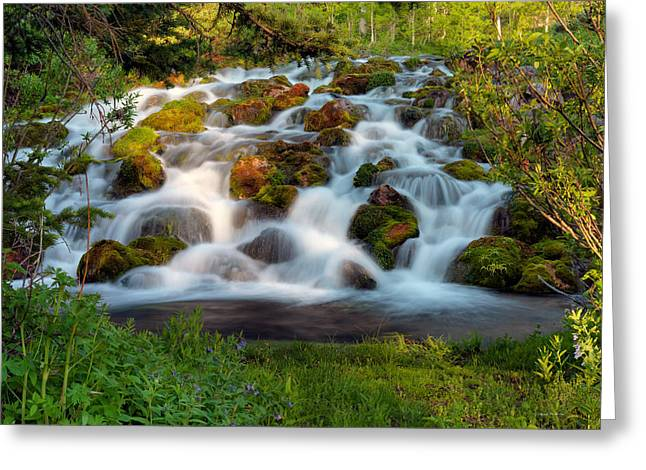 Wasatch Range Cascade Greeting Card by Leland D Howard