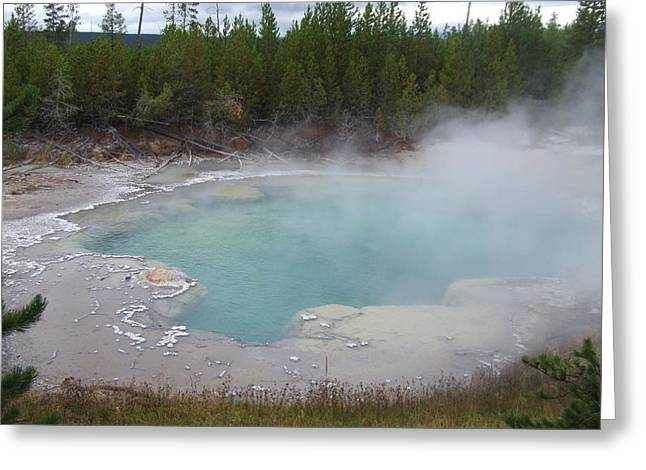 Washburn Hot Springs Yellowstone Greeting Card
