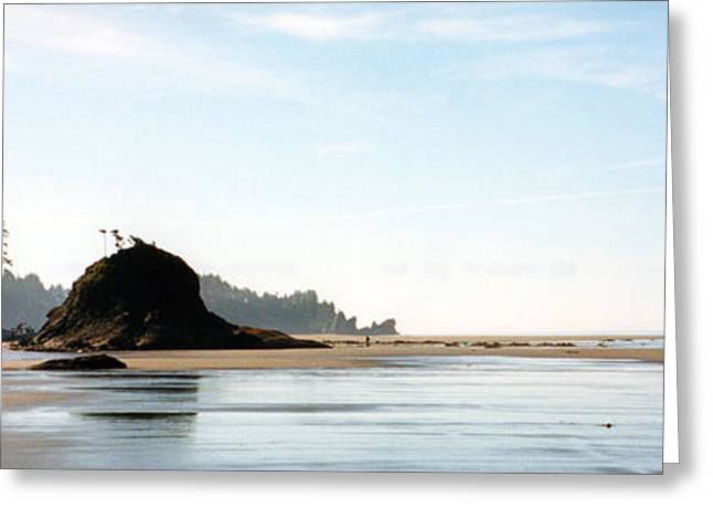 Washington Shore Greeting Card