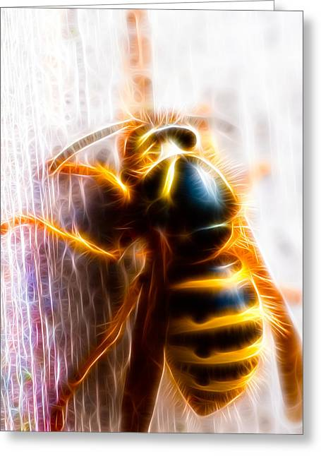 Wasp Greeting Card by Hakon Soreide
