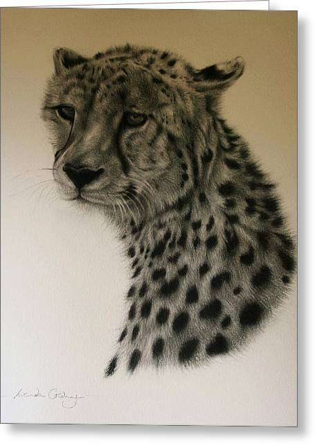 Watchful Greeting Card by Lucinda Coldrey