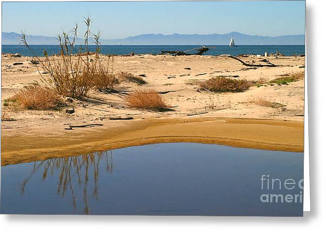 Water By The Ocean Greeting Card by Henrik Lehnerer