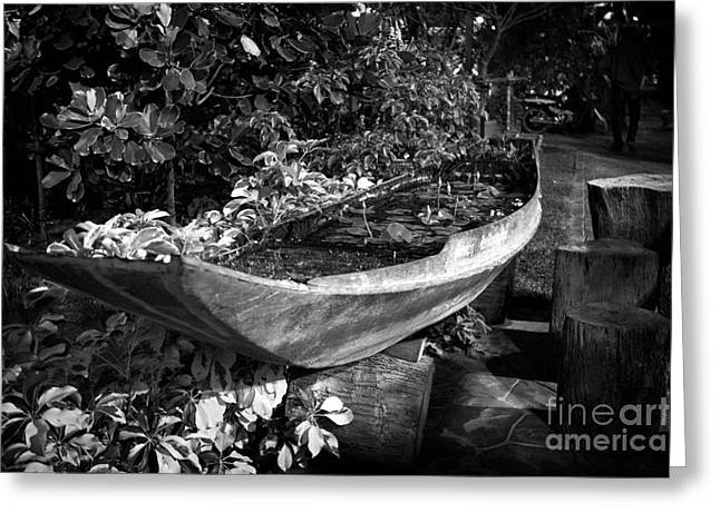 Greeting Card featuring the photograph Water Canoe by Thanh Tran