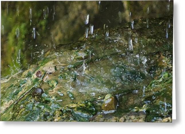 Water Droplets Greeting Card by Joseph Shaffer