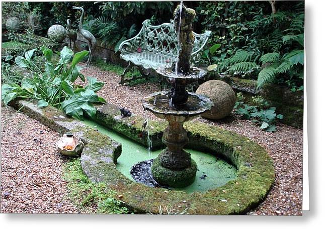 Greeting Card featuring the photograph Water Feature by Katy Mei
