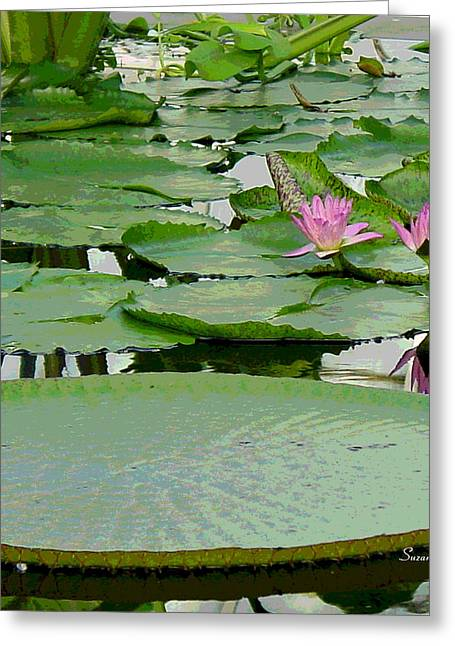Water Lily Land IIi Greeting Card by Suzanne Gaff