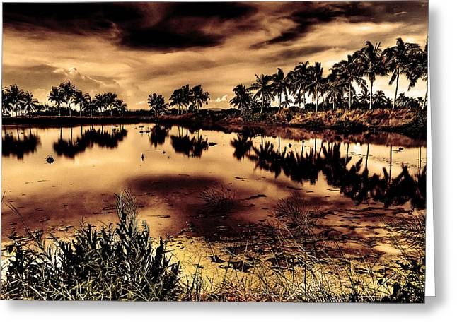 Water Greeting Card by Nicky Ledesma