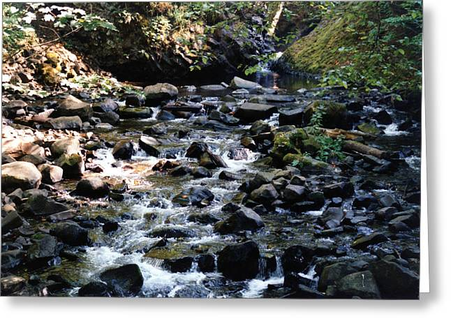 Water Over Rocks Greeting Card by Maureen E Ritter
