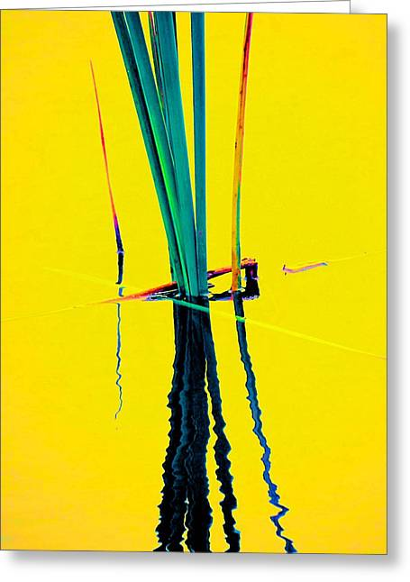 Water Reed Reflections  Greeting Card by Beth Akerman